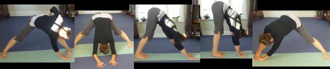 Farnham yoga teacher sue